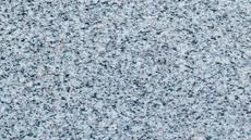cinza-andorinha.png