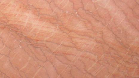 rosa-valencia.png