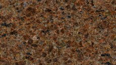 marrom-castor.png