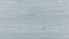 marmore-raja-cinza.png