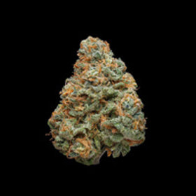 Create 307 Gram by Canndescent (27.2% THC) - 1g