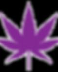 Indica-Strain-Leaf.png