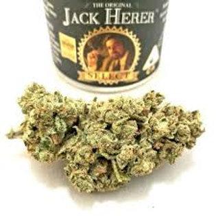The Original Jack Herer 3.5g Flower - Jack Herer, 1/8