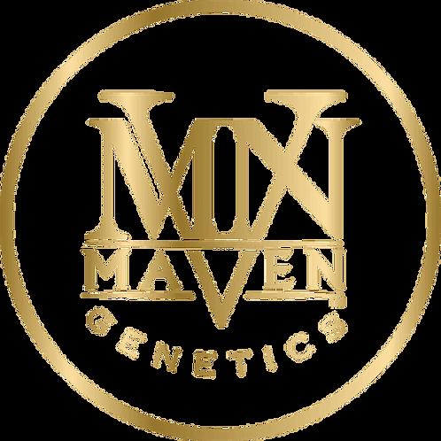 MAVEN - SKYWALKER OG 3.5G