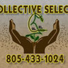 Collective Selects logo.jpg