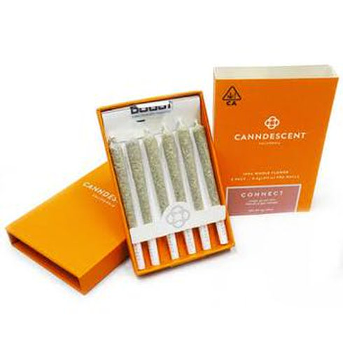 CANNDESCENT CONNECT 408 PRE-ROLL 6PK - 3G