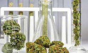Cannabis Testing Thousand Oaks.jpg