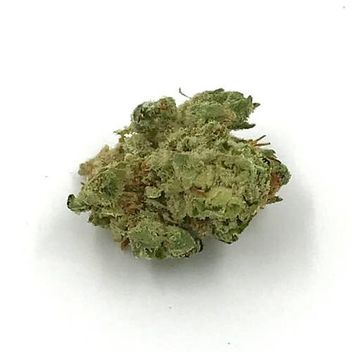 Orange Creamsicle (14 Grams) by Sessions Supply Co. (16.62% THC)
