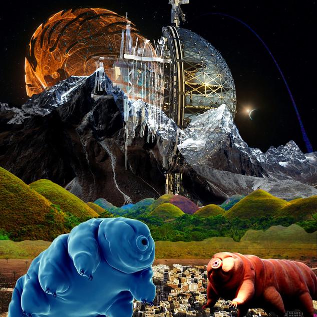 tardigrade 1