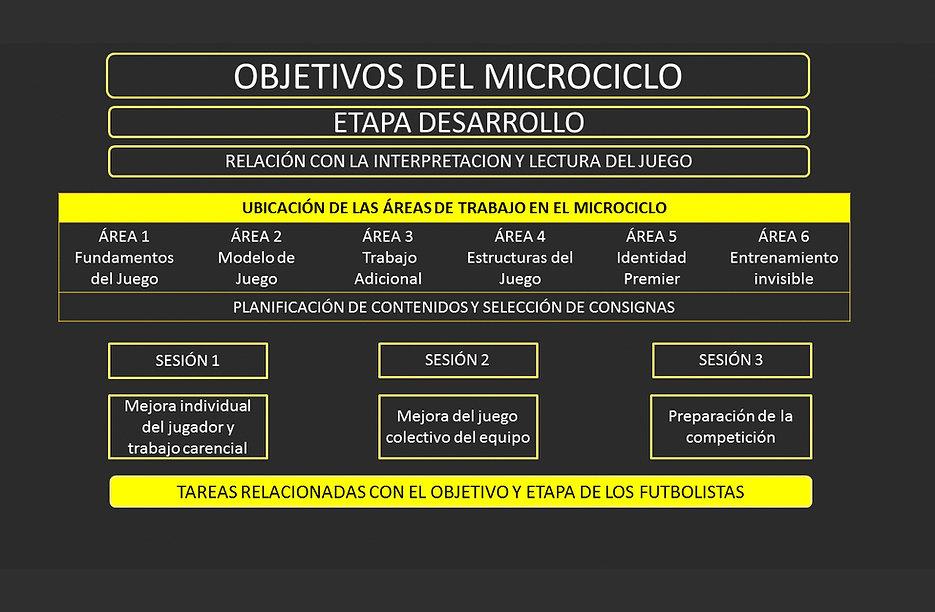9 ETAPA DE DESARROLLO.jpg