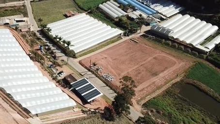 Soluções Inteligentes: 3 ações úteis para redução de energia no agronegócio.