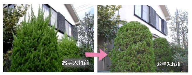kaizuka.1.jpg