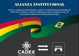 ALIANÇA INSTITUCIONAL