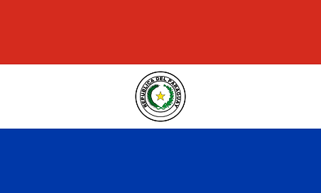 paraguay-flag-large.png