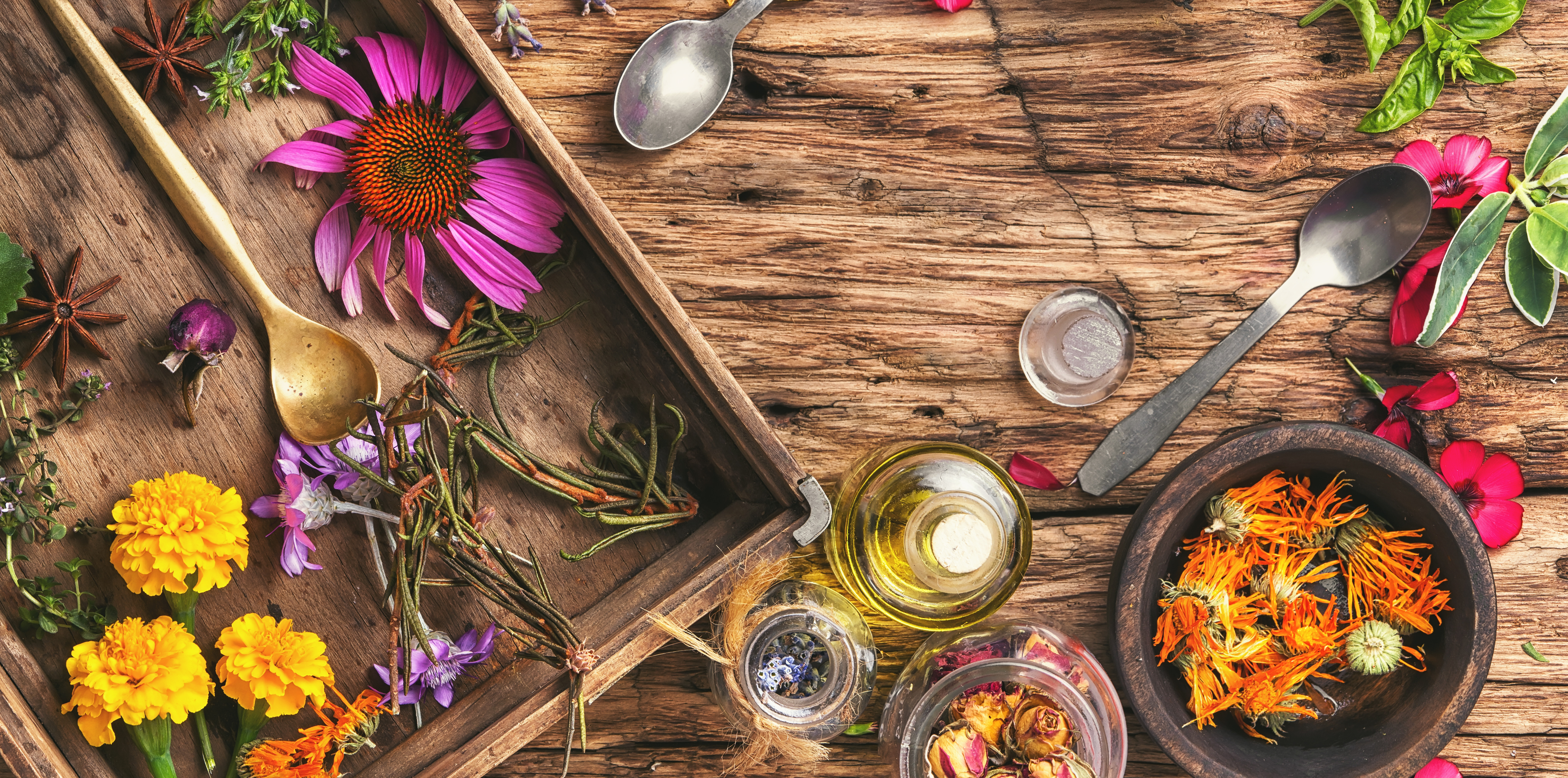 Naturopath Initial Appointment