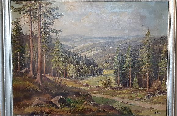 Horn - Erzgebirge Landschaft