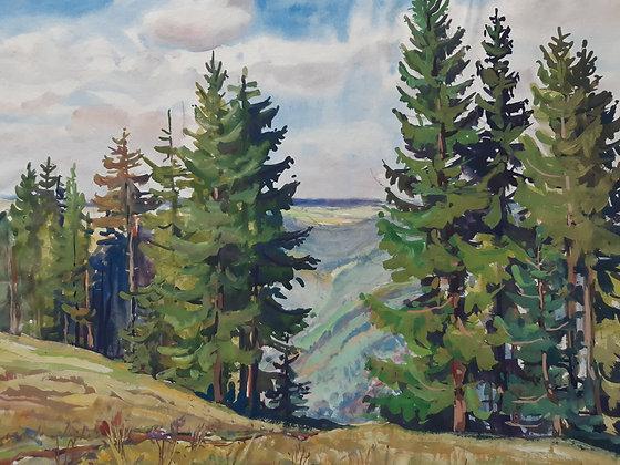 "Kurt Tetzner - Aquarell ""Lichtenhain Th. Waldwiese"""