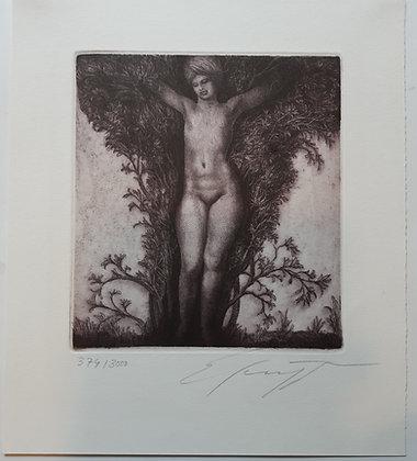 """Ernst Fuchs / Wien - """"DAPHNE"""" Radierung"""