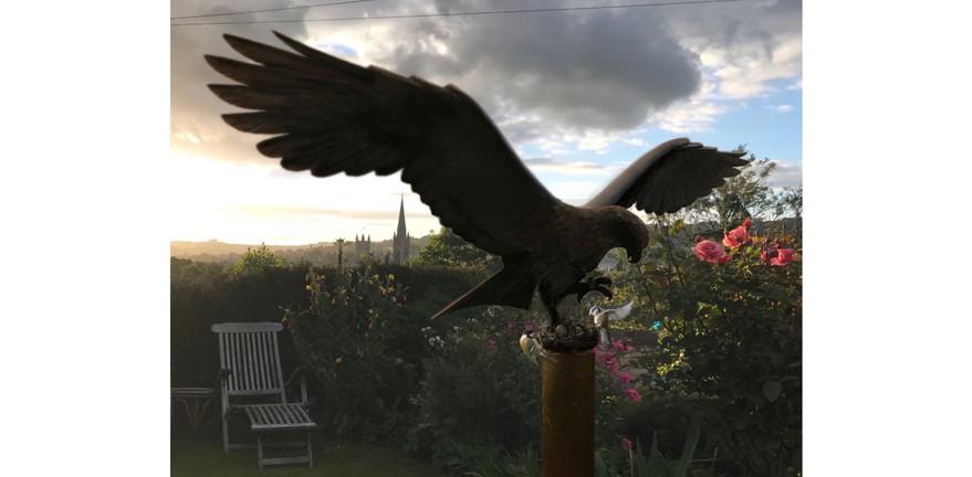 Bird Feeder.JPEG
