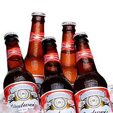 Budweiser / Combo 5