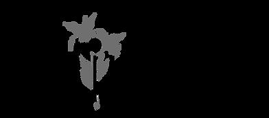 Flinoa-Logo-GROSS.png