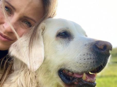 Ernährung aus tierheilpraktischer Sicht: Stefanie Schiller über ihre Erfahrungen im Interview