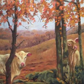Fall Pasture
