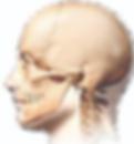 clinica_fernandez_bisbal