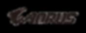 AORUS_logo_HA_BK.png