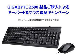 Z590CP_TOP350.JPG