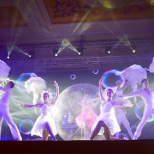 LED Ballerinas.JPG