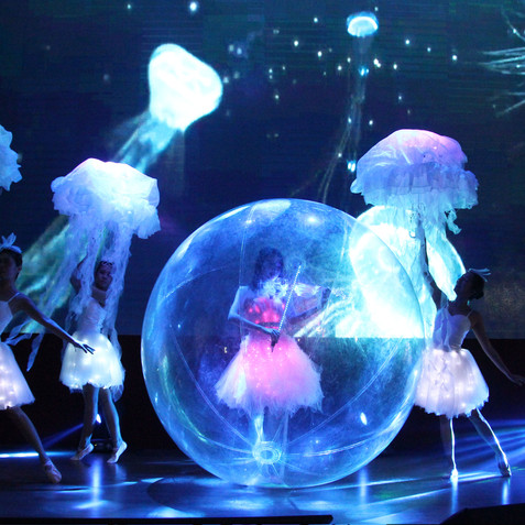 Led bubble Show.jpg
