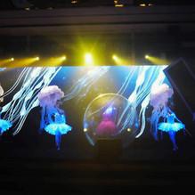 LED ballet Dance.JPG