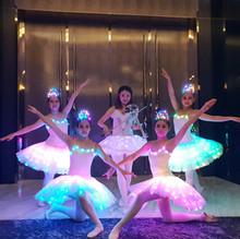 LED Ballerinas LED Violinist.jpg