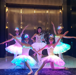 LED Ballerinas LED Violinist.jpg