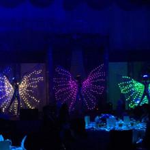 Malaysia LED Dance 2.jpg