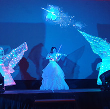 LED Butterfly Dance Malaysia 2.jpg