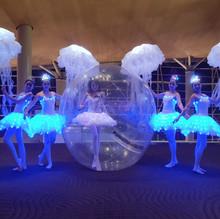 Malaysia Bubble Violinist LED Jellyfish.