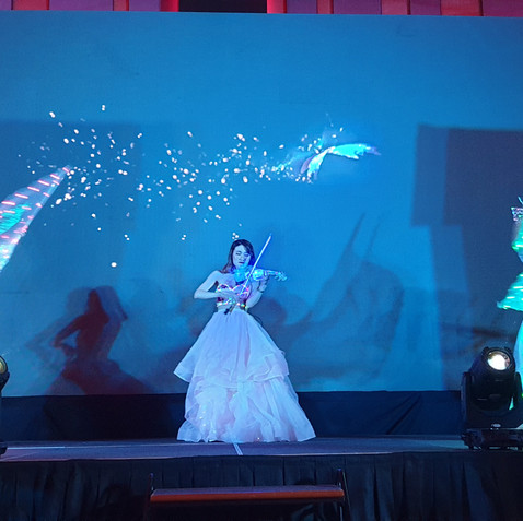 Led Violinist LED Butterfly Malaysia sho