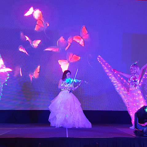LED VIOLINIST LED BUTTERFLY MALAYSIA.jpg