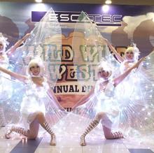 LED butterfly Dancer Malaysia.jpg