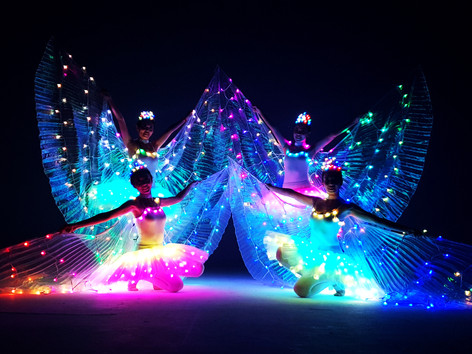 Malaysia LED Butterfly Dance.jpg