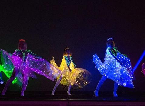Malaysia LED Butterfly Dance.JPG