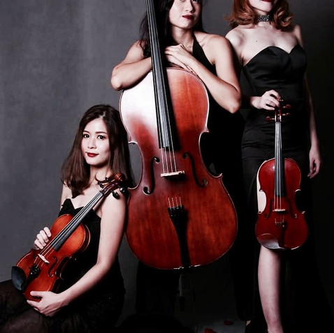 Electric string trio.jpg