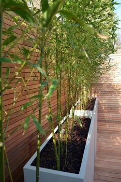 Garden builders Anewgarden Modern contemporary style London grey planter bamboo