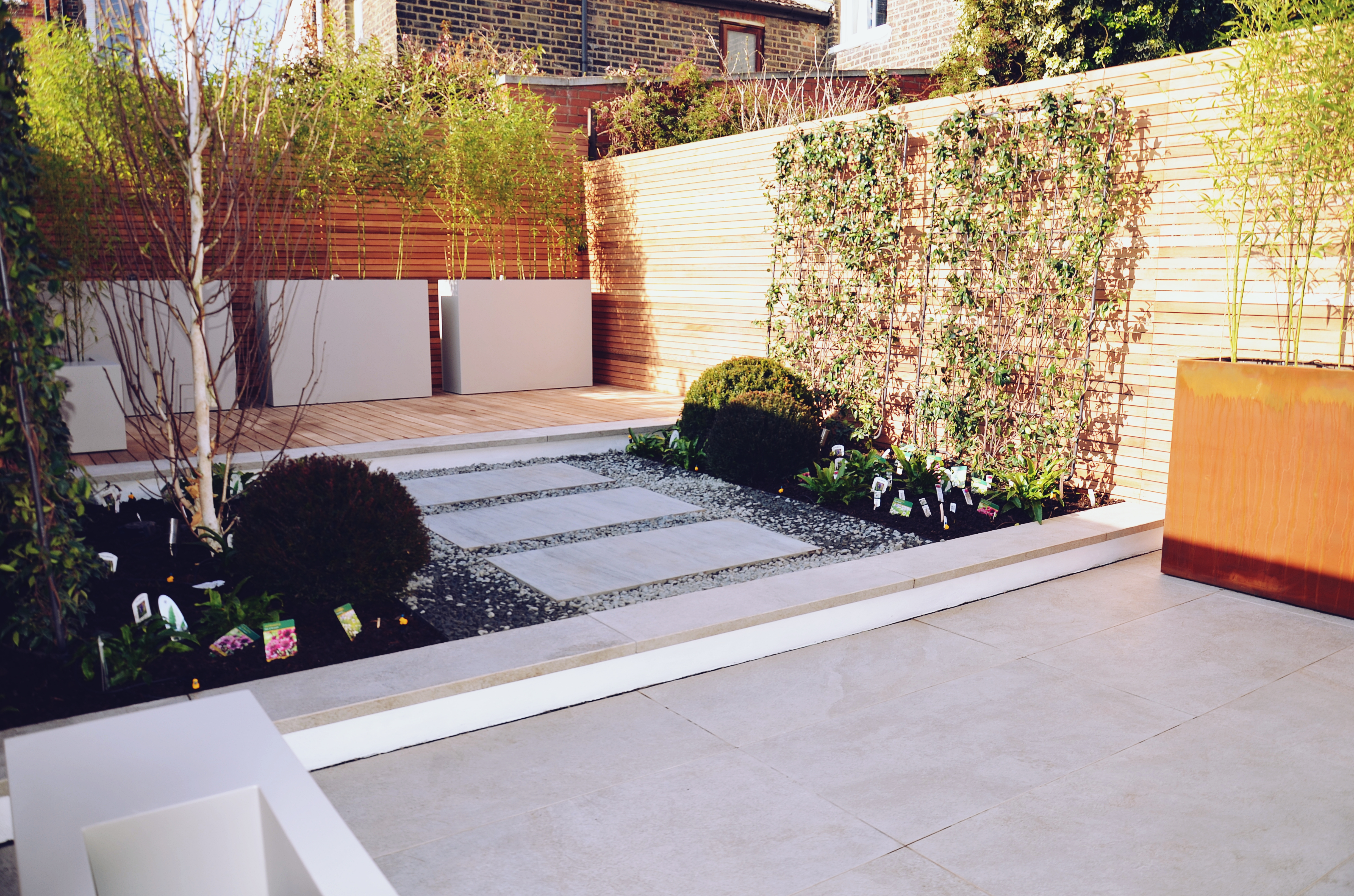 Garden builders Anewgarden Modern contemporary style London jasmine living wall
