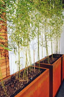 Garden builders Anewgarden Modern contemporary style London corten planter with bamboo