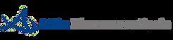 Attix logo website 2.png