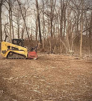 landclearing-1_edited.jpg