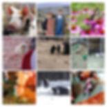 IMG_20190423_161950_2-COLLAGE.jpg